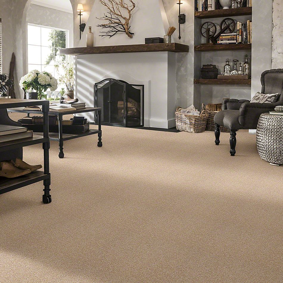 Shaw Floors Simply The Best Super Buy 45 Ivory E9599_00101