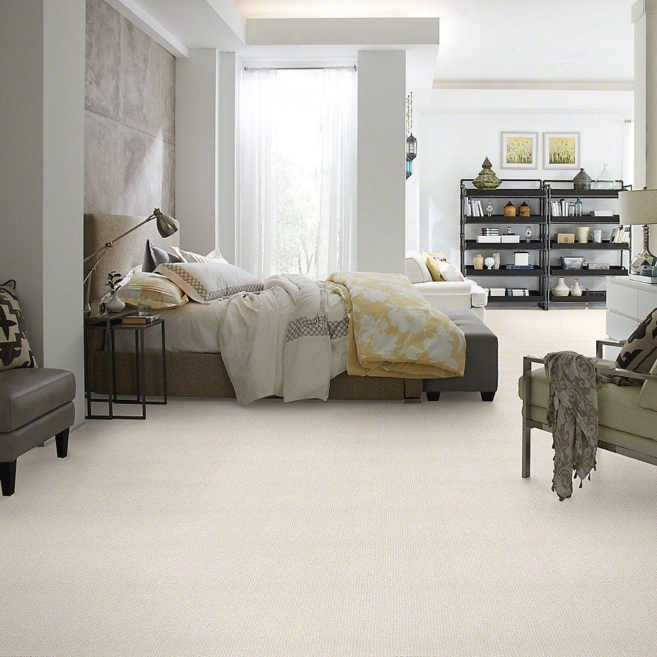 Shaw Floors Bellera Outside The Lines Snow Fall 00101_E9645