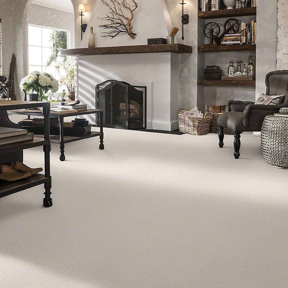 Shaw Floors SFA Timeless Appeal III 15′ Mushroom 00101_Q4315