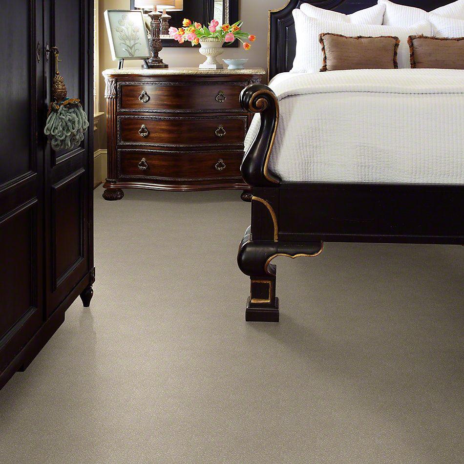 Shaw Floors Roll Special Xv436 Reflection 00101_XV436
