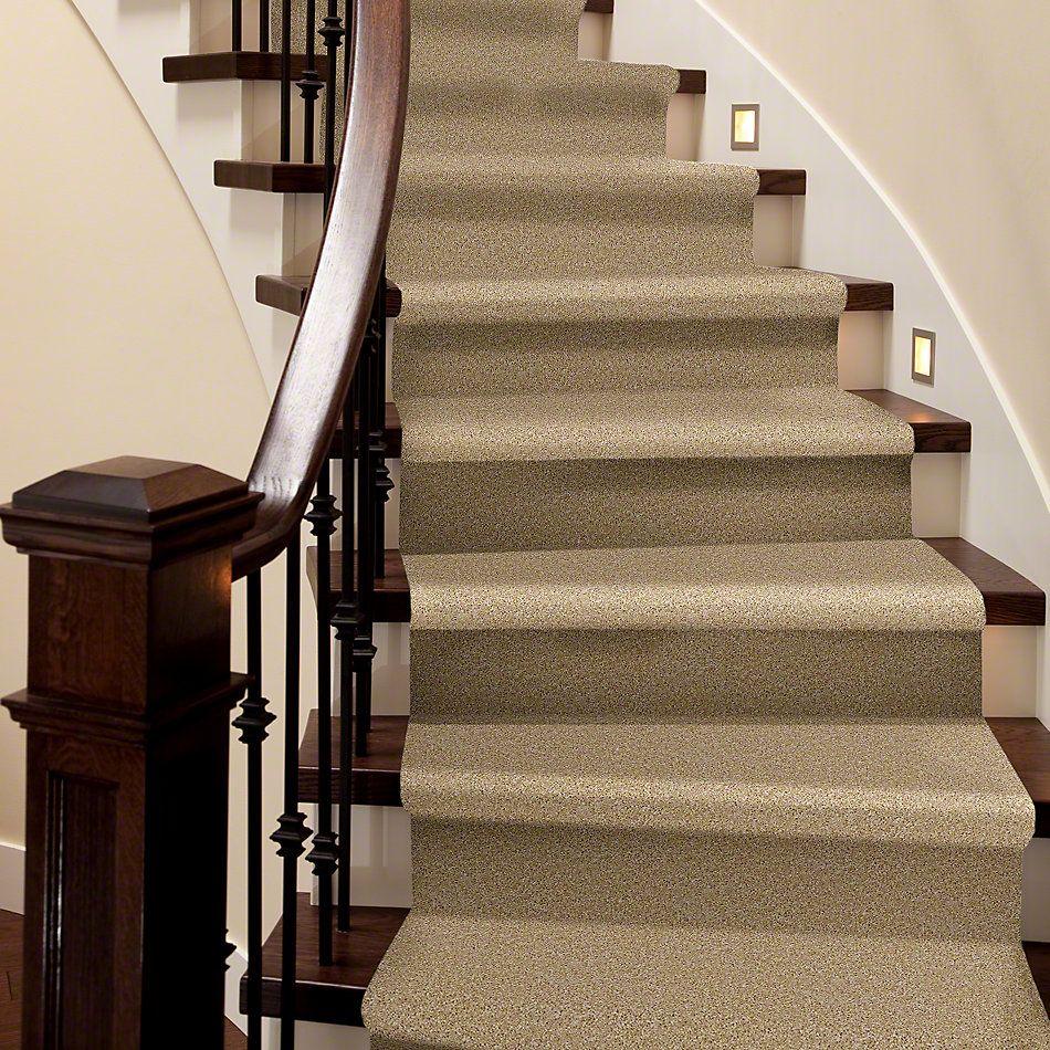 Shaw Floors Vermont (s)12′ Light Aspiration 00101_E0263