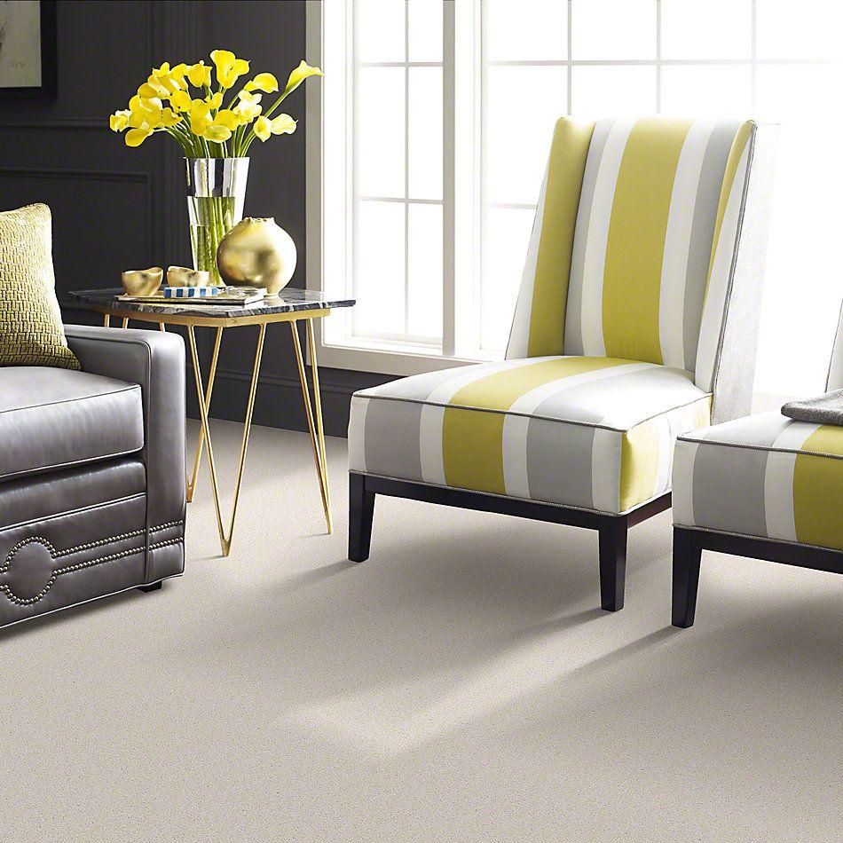 Shaw Floors Sandy Hollow Classic Iv 12′ Mushroom 00101_E0554
