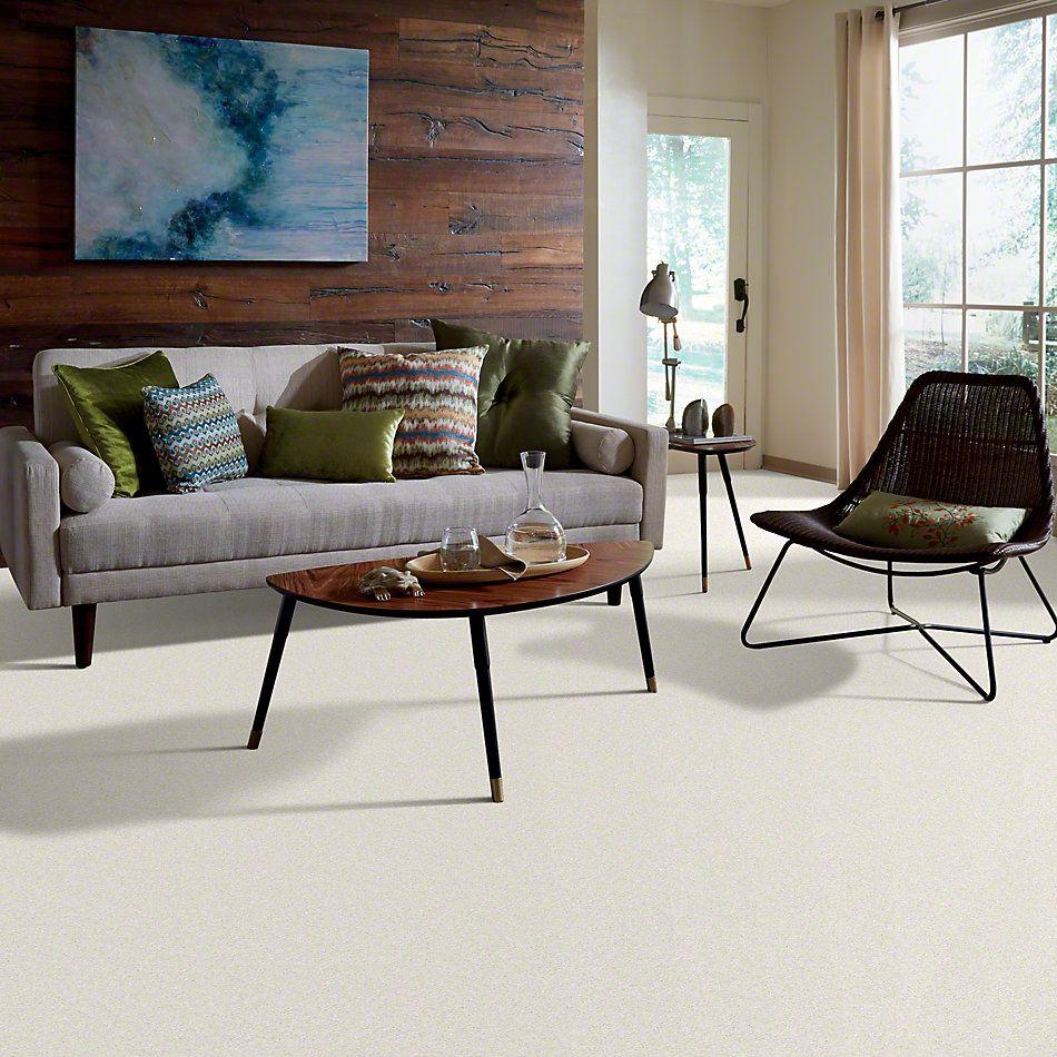 Shaw Floors Keep Me I Shell 00101_E0696