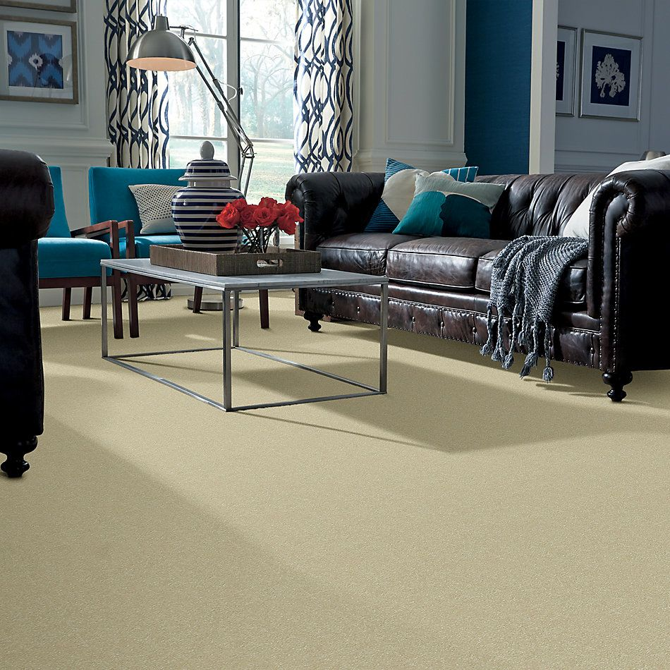 Shaw Floors Value Collections Passageway 2 12 Cream 00101_E9153