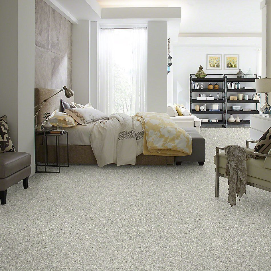 Shaw Floors Simply The Best Wild Extract Porcelain 00101_E9351