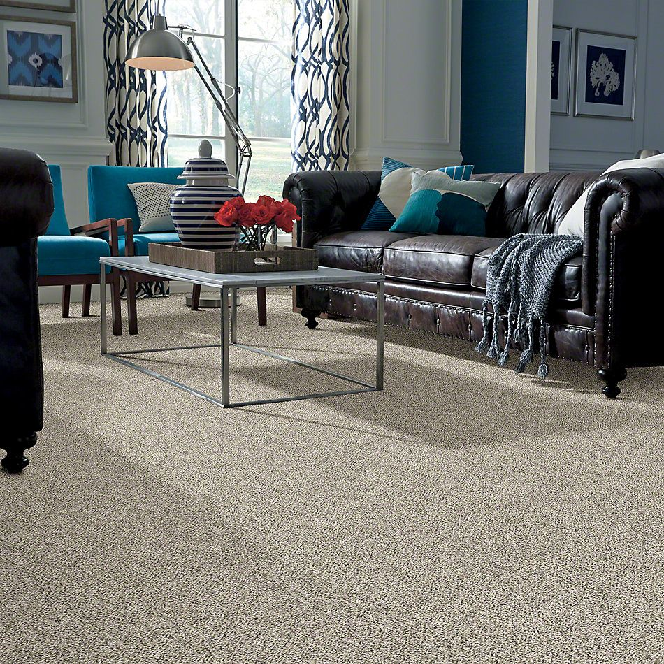 Shaw Floors All Set I Goose Feather 00101_E9874
