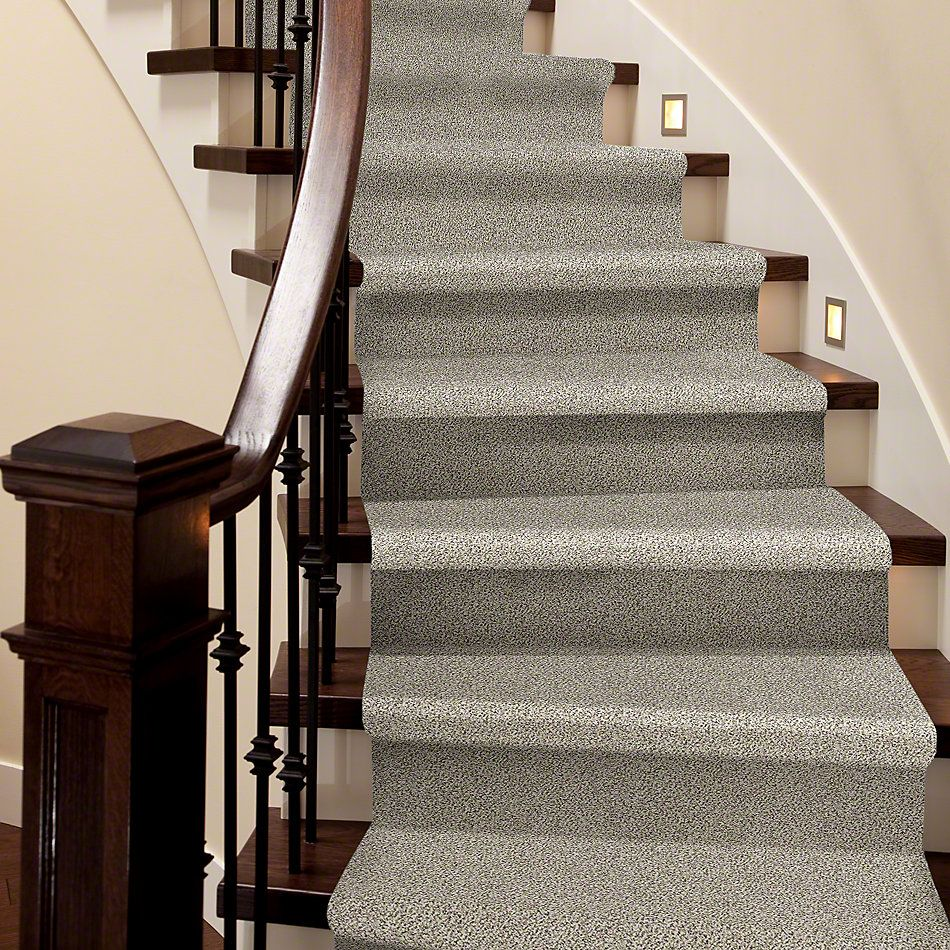 Shaw Floors Simply The Best All Set I Goose Feather 00101_E9874