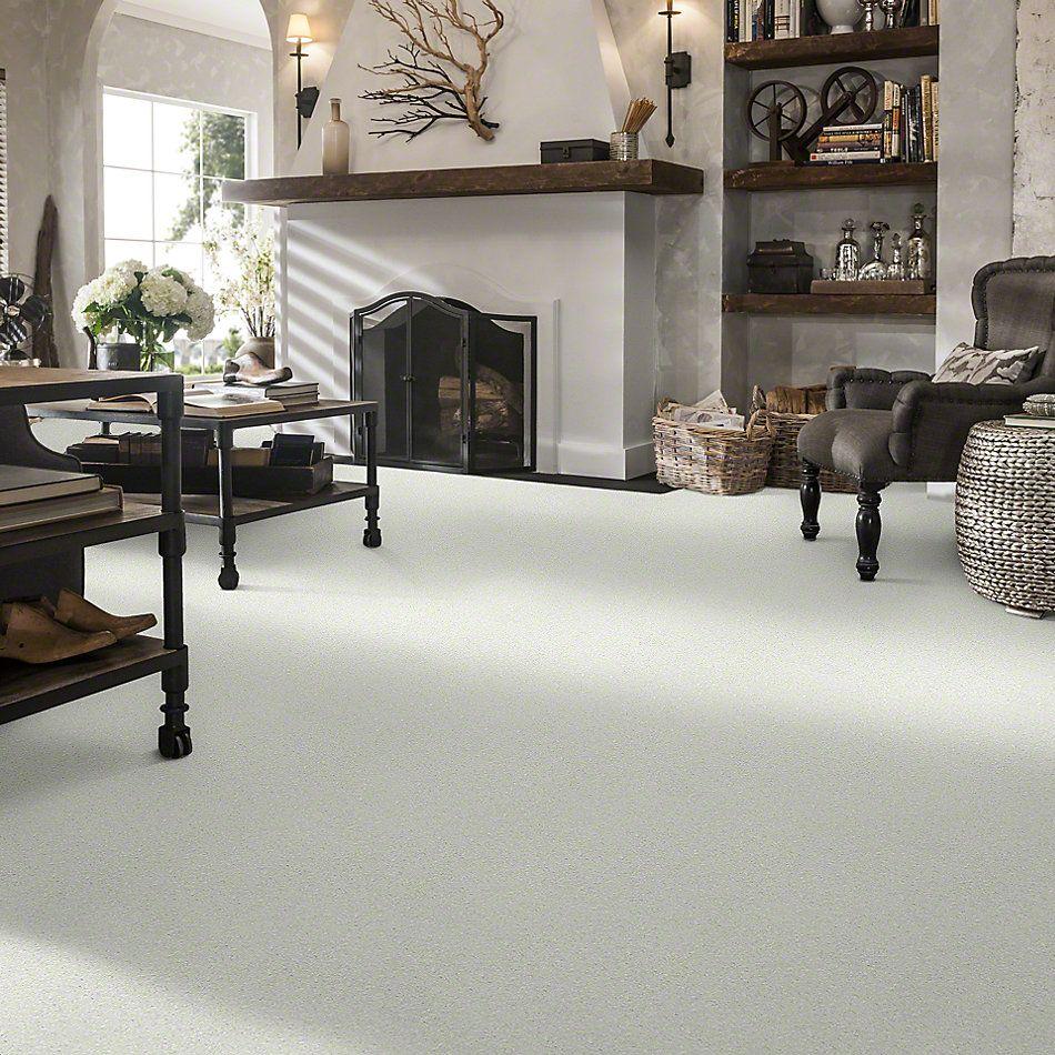 Shaw Floors SFA Pun Intended Porcelain 00101_EA656
