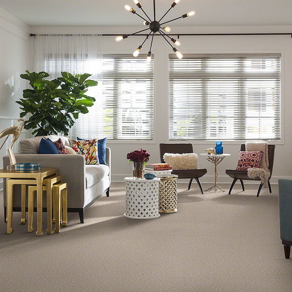 Shaw Floors SFA Garden Lake Silken Sand 00101_Q4208