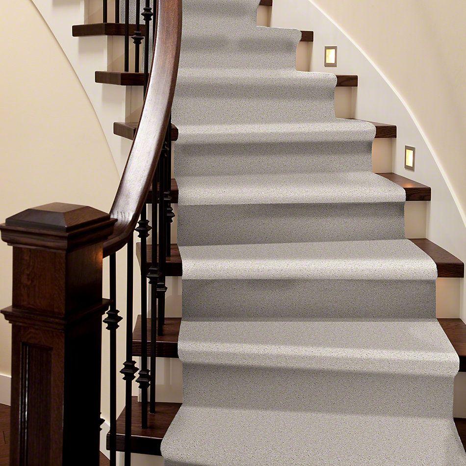 Shaw Floors Roll Special Xv420 Lilac 00101_XV420