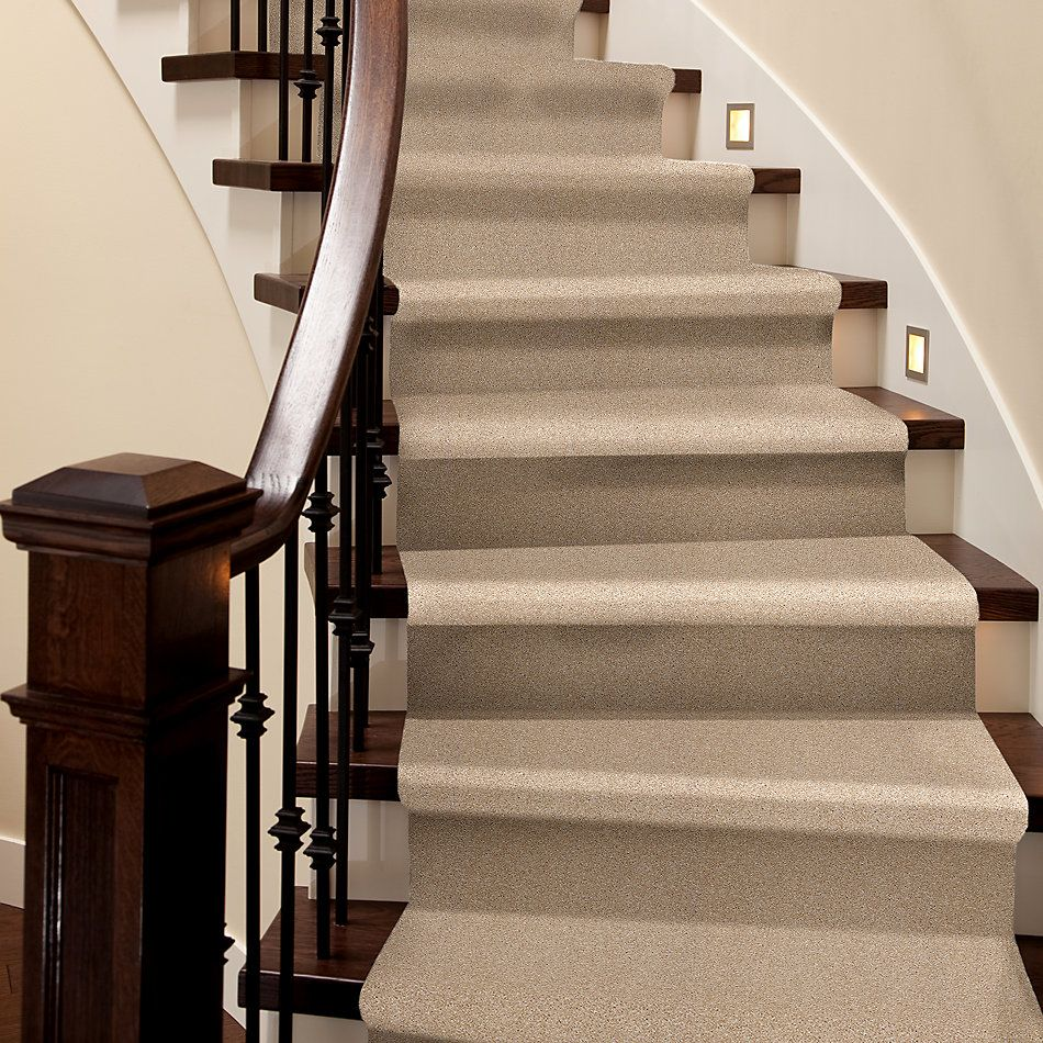Shaw Floors Roll Special Xy228 Ivory 00101_XY228