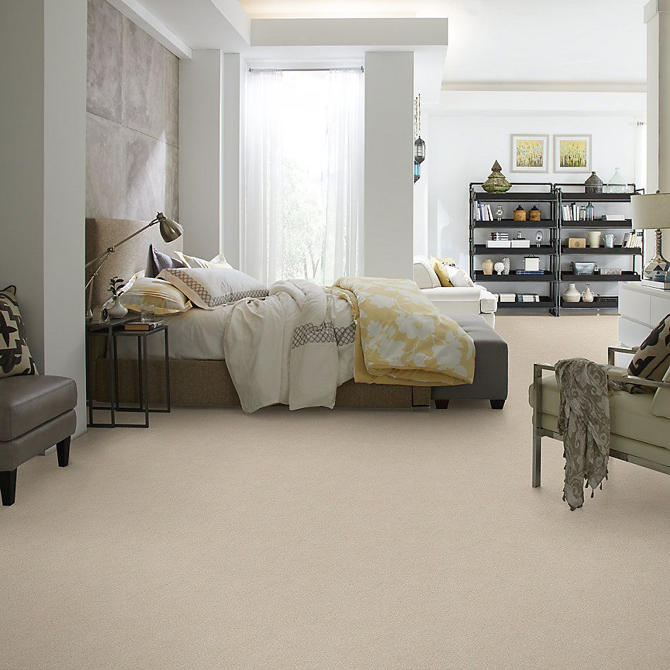 Shaw Floors Value Collections Xz155 Net Bleached 00101_XZ155