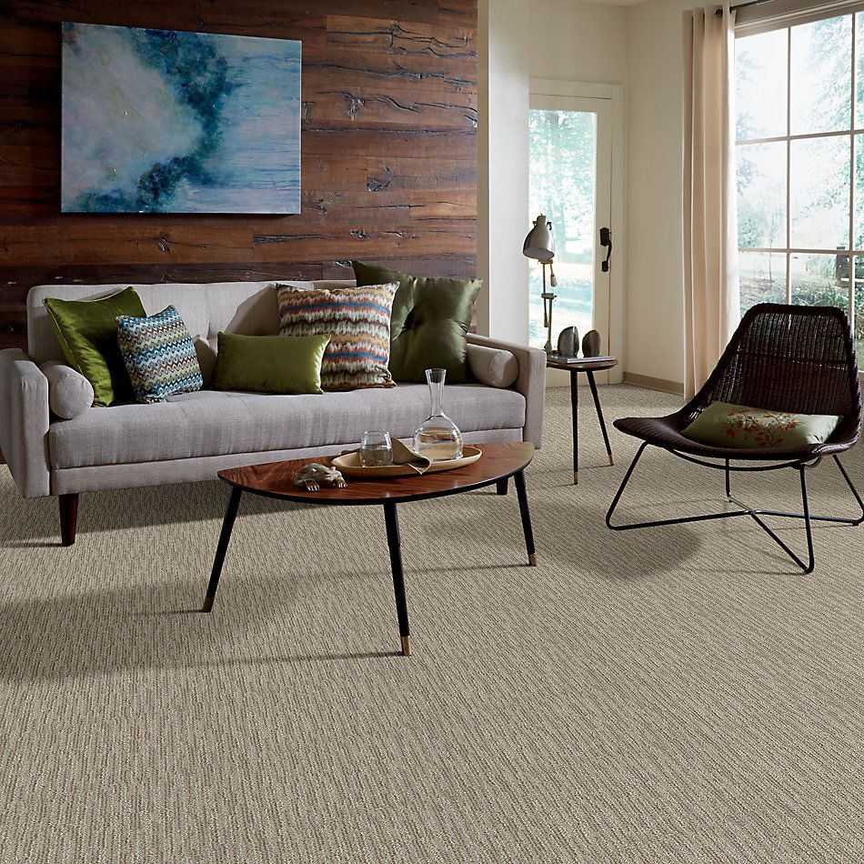 Shaw Floors Value Collections Xz167 Net French Linen 00101_XZ167