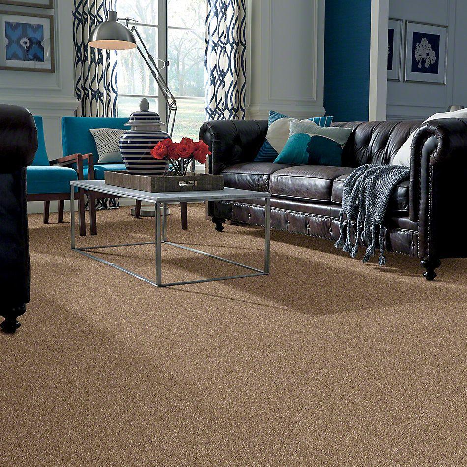 Shaw Floors SFA Enjoy The Moment II 15′ Mushroom 00102_0C139