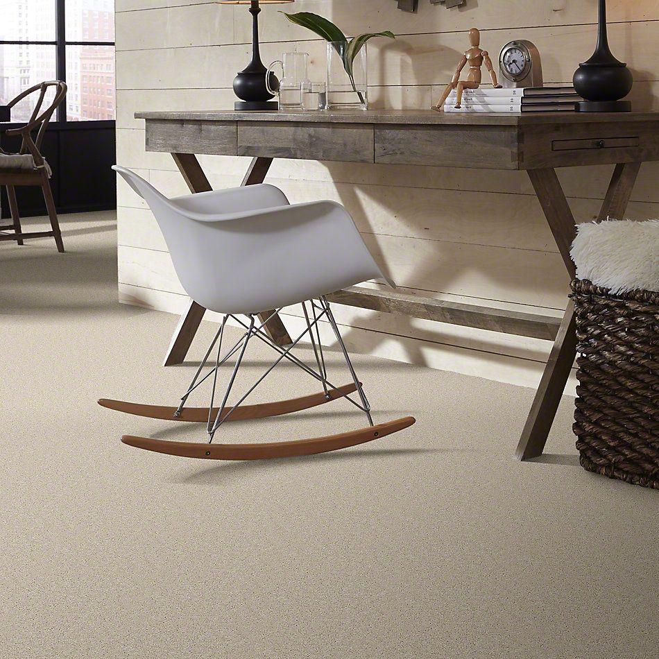 Shaw Floors SFA Topic Desire I Winter Mist 00102_0C100