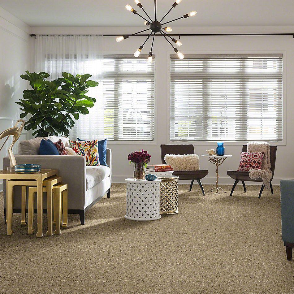 Shaw Floors Shaw Flooring Gallery Burtonville Bisque 00102_5293G
