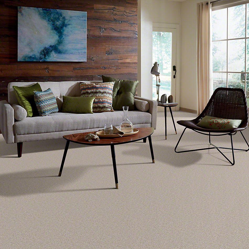 Shaw Floors Town Creek III Cloud 00102_52S32