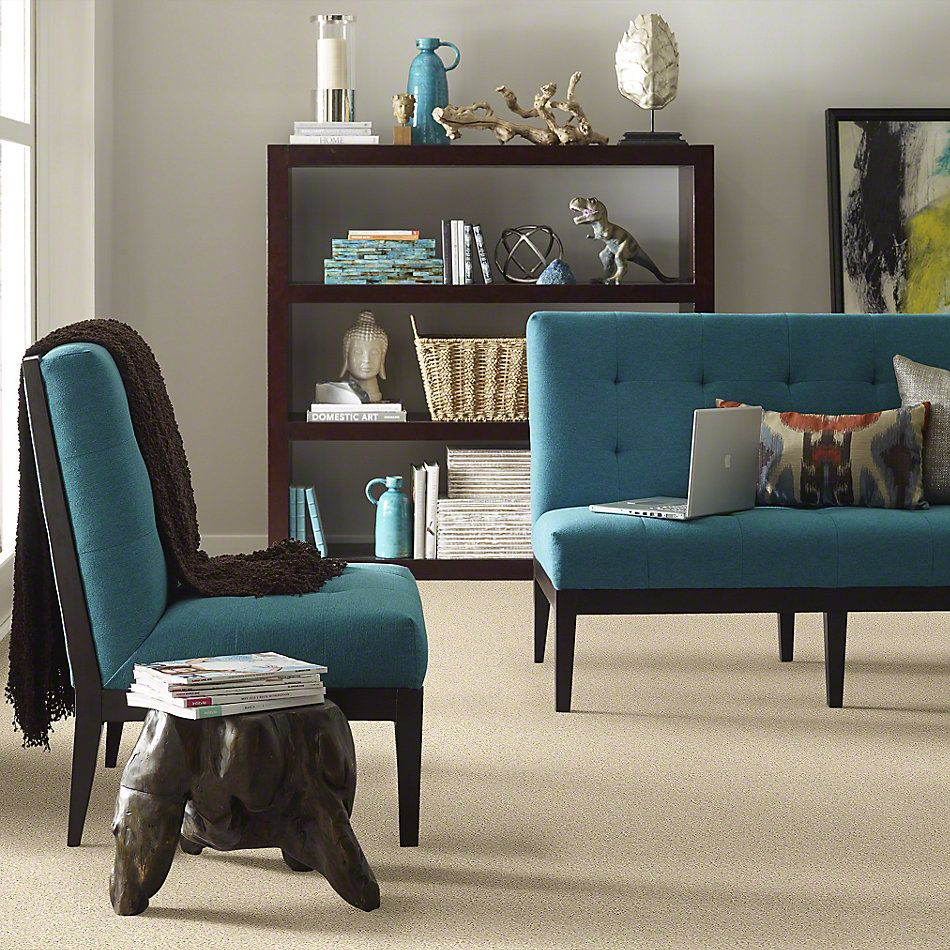 Shaw Floors Shaw Design Center Beautifully Simple II 15′ Agate 00102_5C752