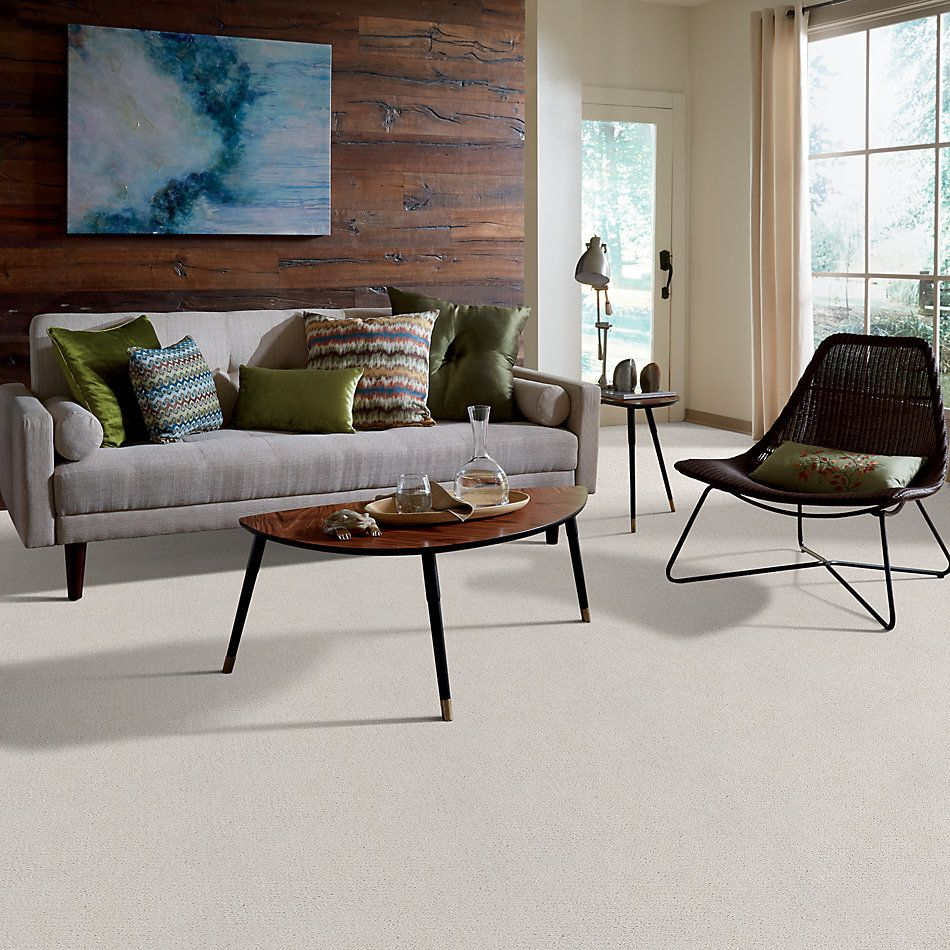 Shaw Floors Value Collections Mainstay Net Winters Dawn 00102_5E302