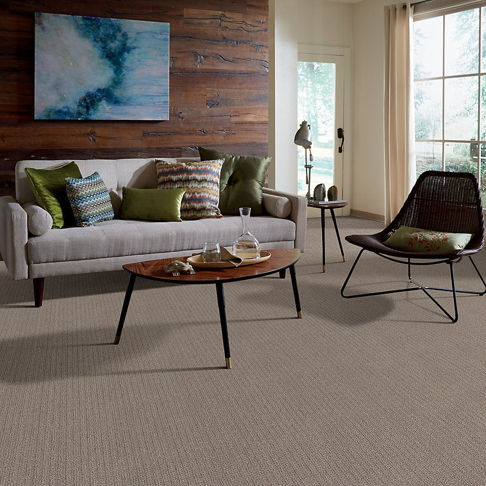 Shaw Floors Value Collections Stay Fit Net Mesa 00102_5E330