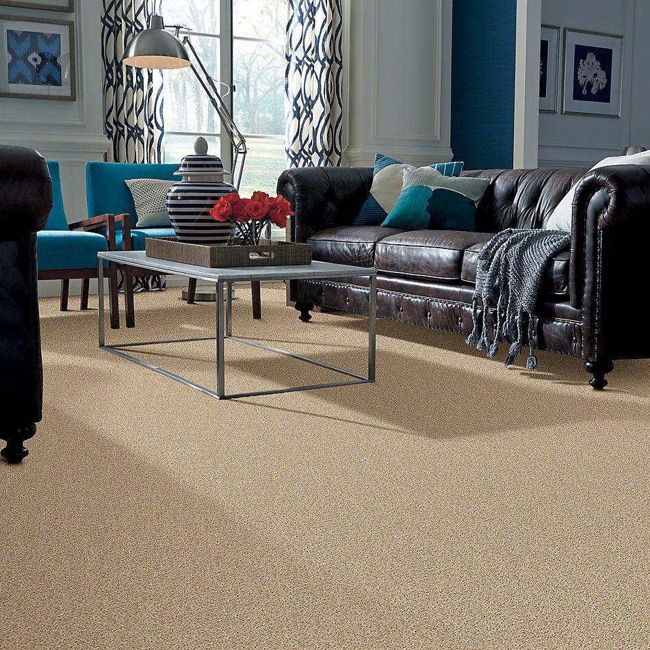 Shaw Floors Go Big Soft Sand 00102_E0571