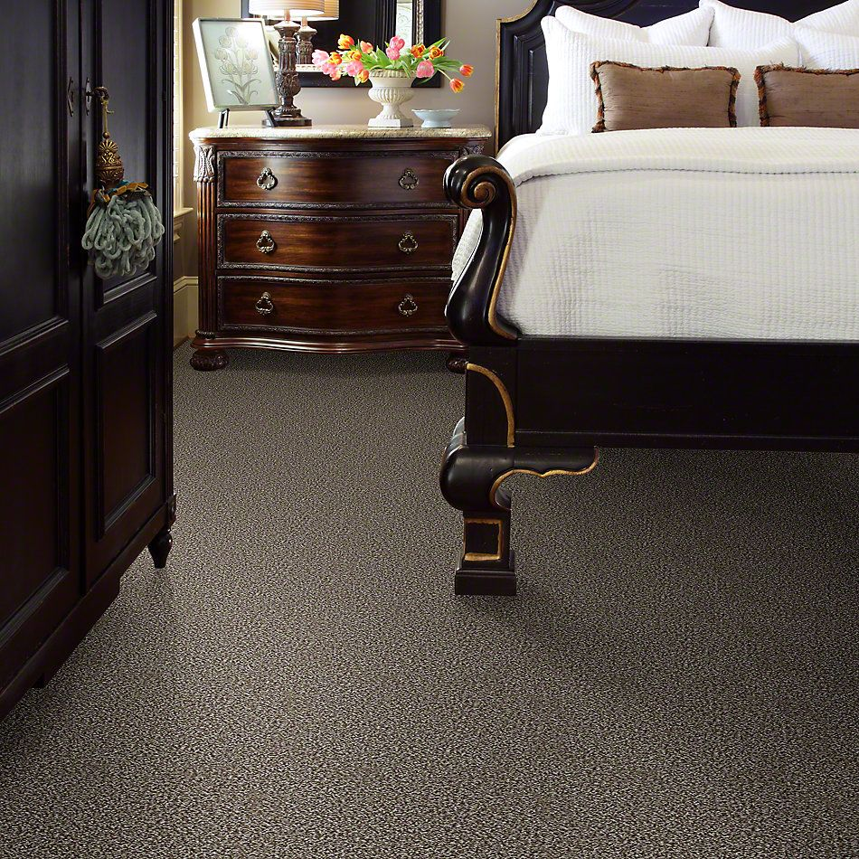 Shaw Floors Simply The Best Hypnotic Sparrow E9347_00102