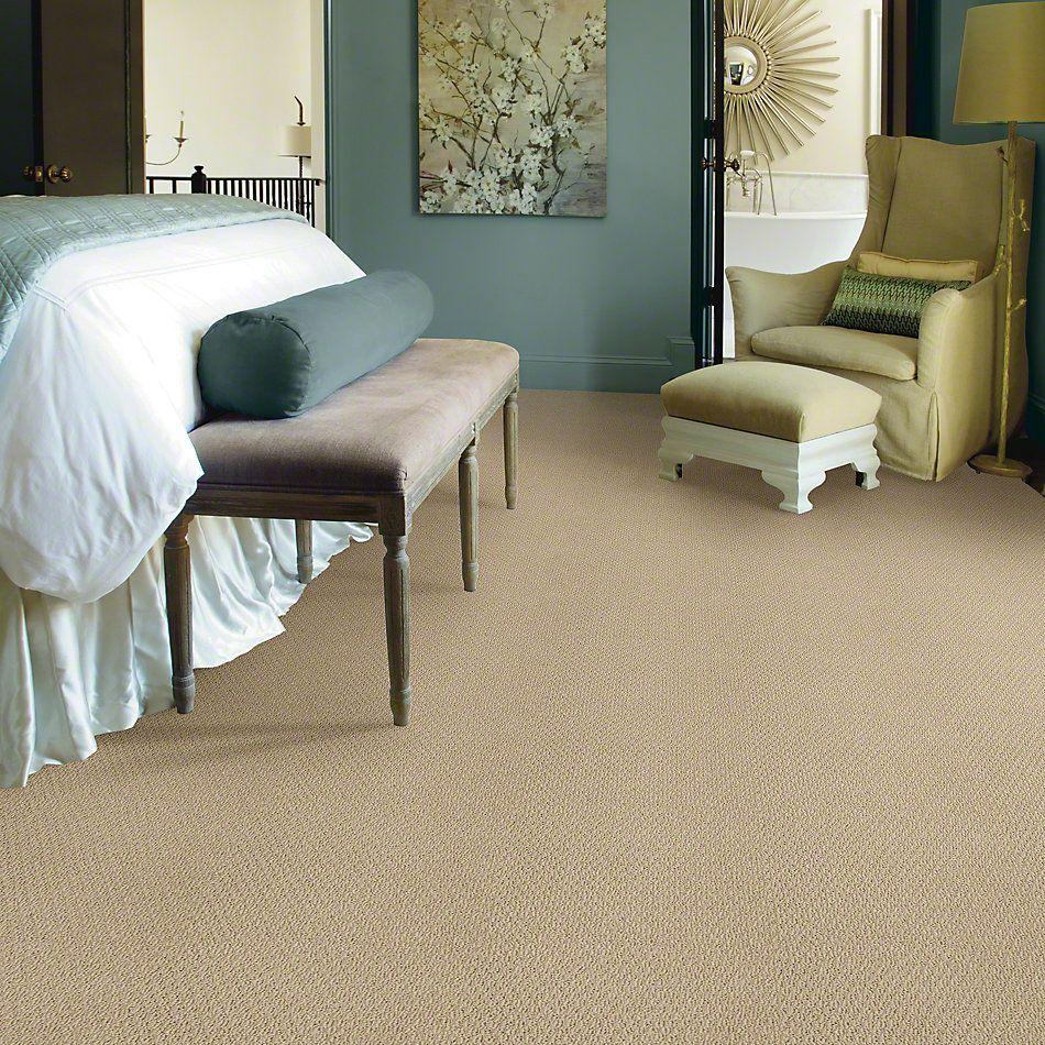 Shaw Floors Ready To Go Dunes 00102_E0487