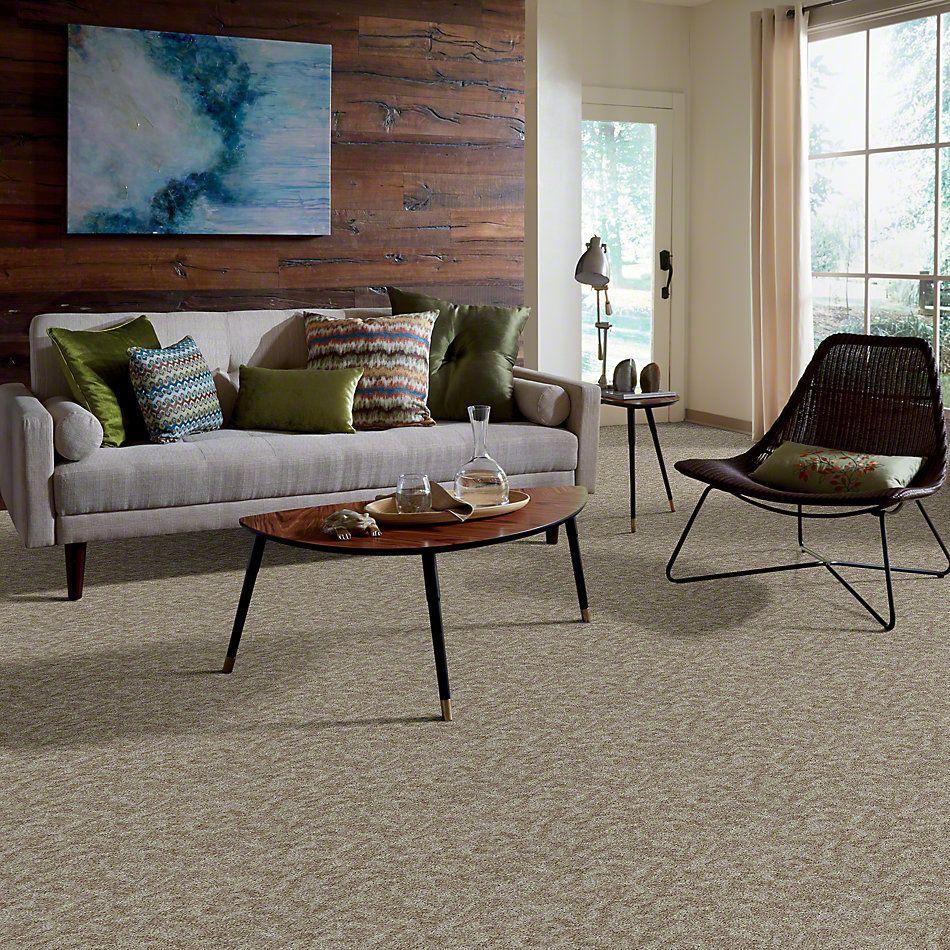 Shaw Floors Focus Misty Glen 00102_E0524