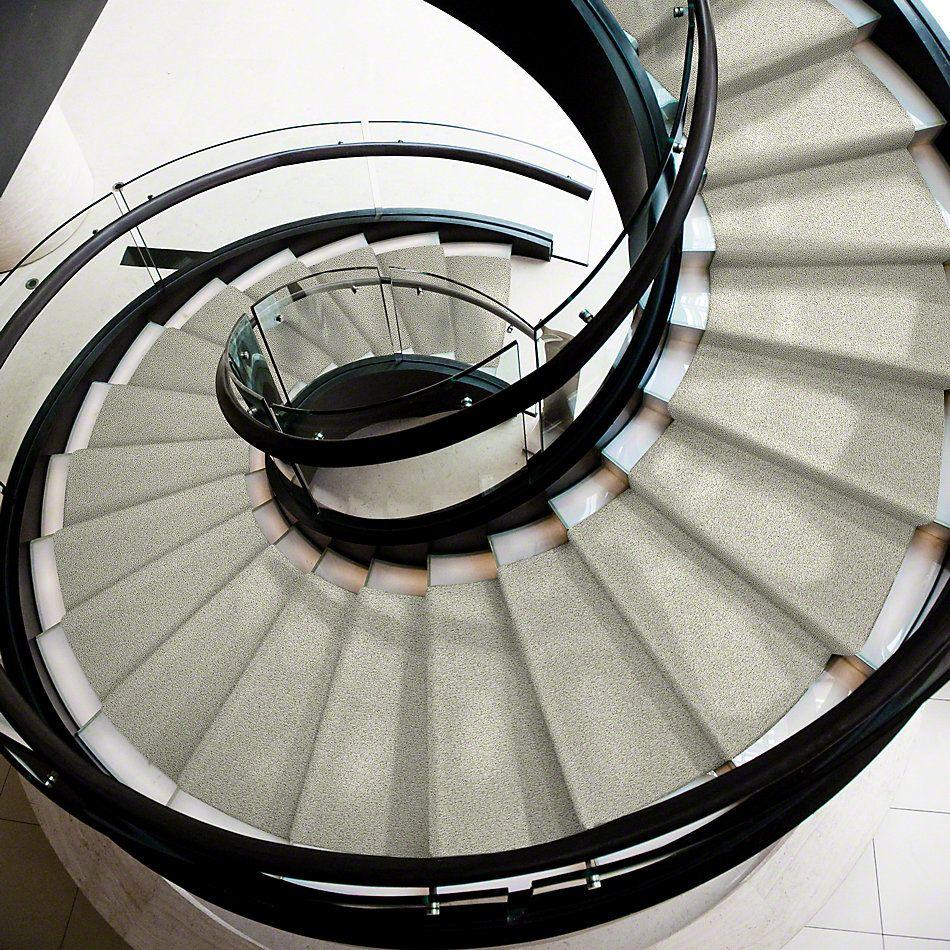 Shaw Floors Value Collections Color Flair Net Dandelion 00102_E0853