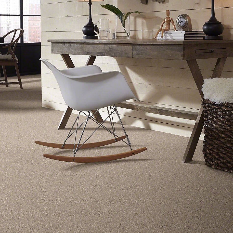 Shaw Floors Value Collections You Know It Net French Canvas 00102_E0927