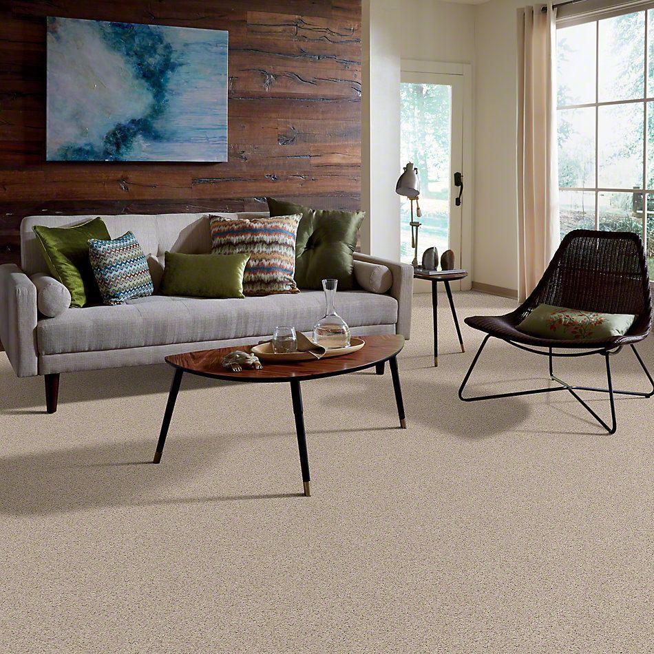 Shaw Floors Spice It Up Shaker Beige 00102_E9013