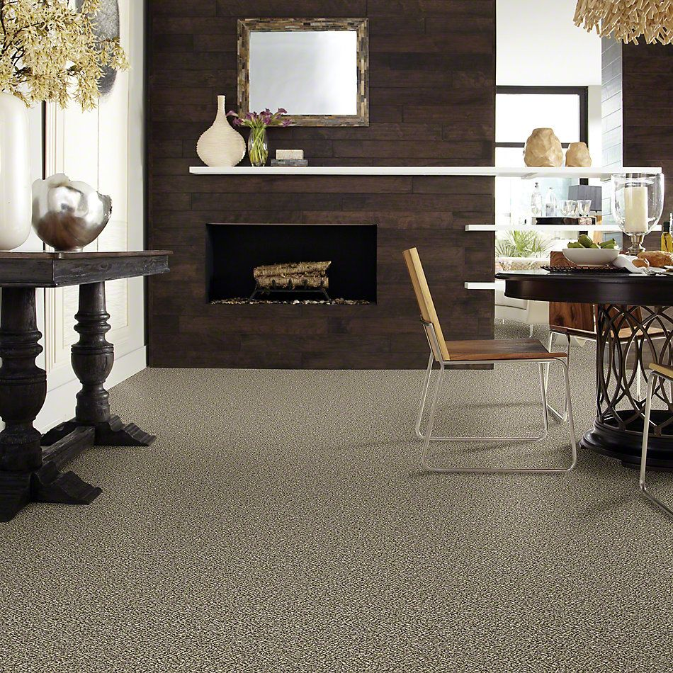 Shaw Floors Value Collections Because We Can II 15′ Net Cape Town 00102_E9315
