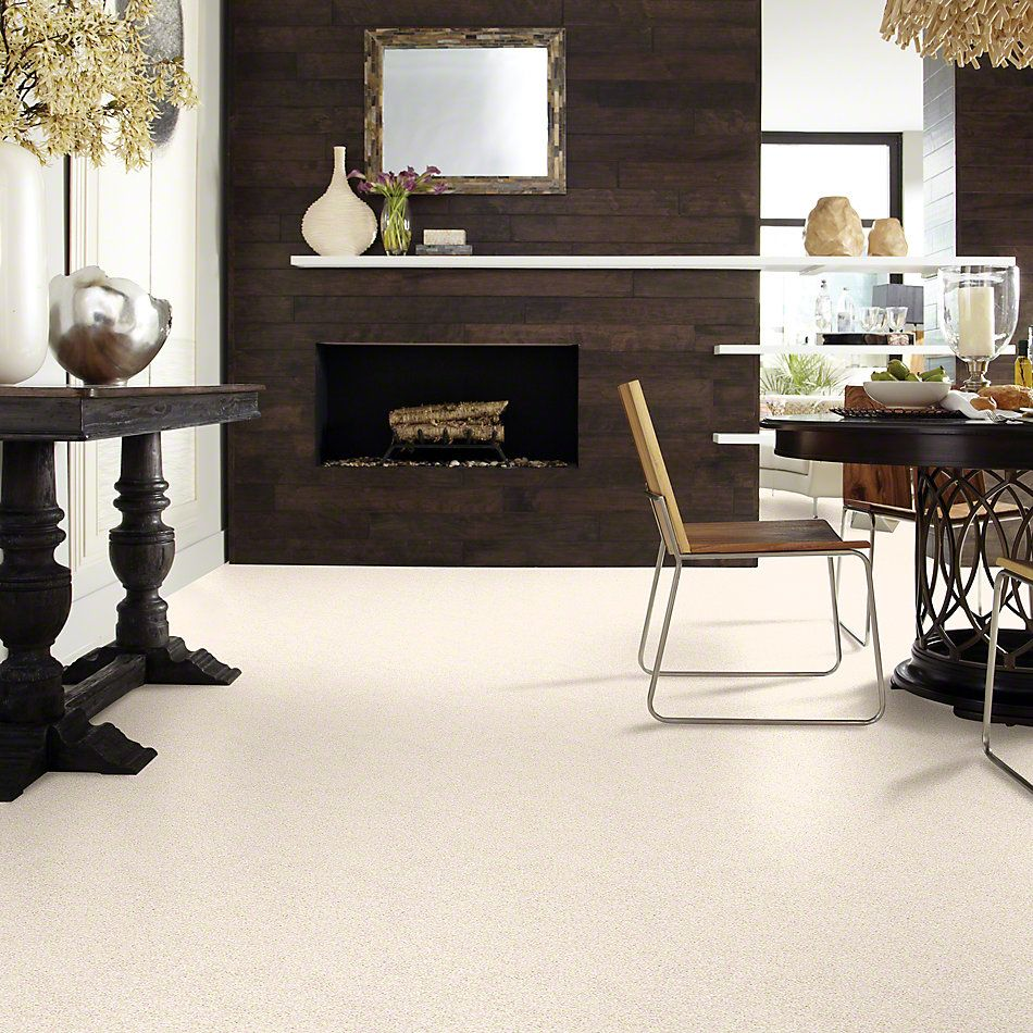Shaw Floors Foundations Palette Pebble 00102_E9359