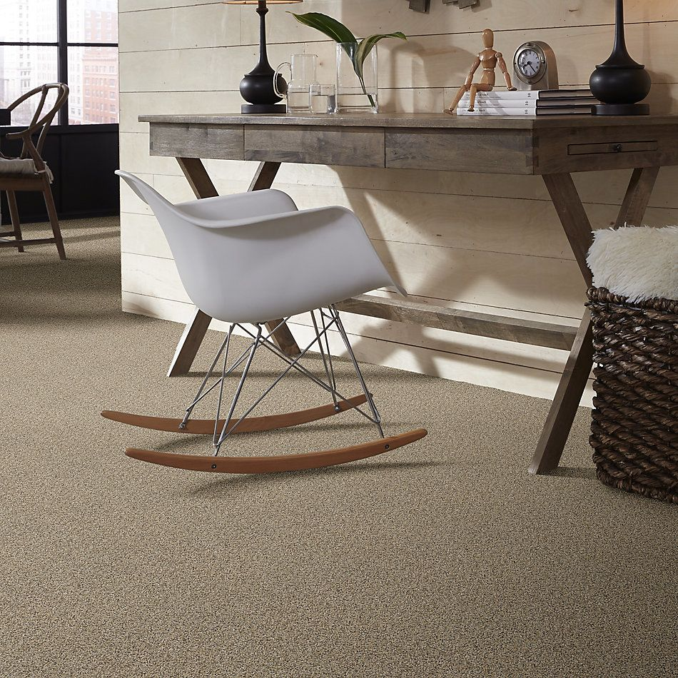 Shaw Floors Value Collections Frosting Net Colonial Cream 00102_E9460
