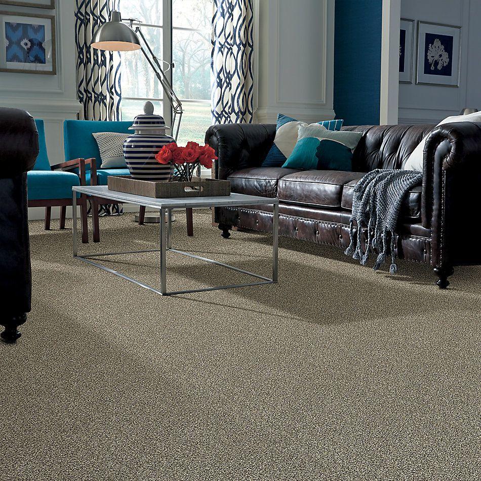 Shaw Floors Bellera Perpetual I Net Eggshell 00102_E9787