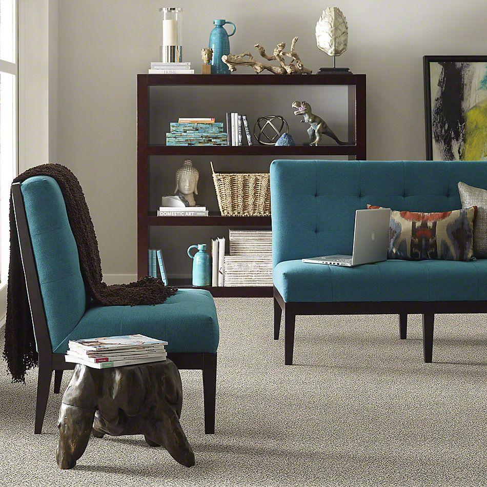 Shaw Floors Value Collections All Set II Net Atlantic Sand 00102_E9895