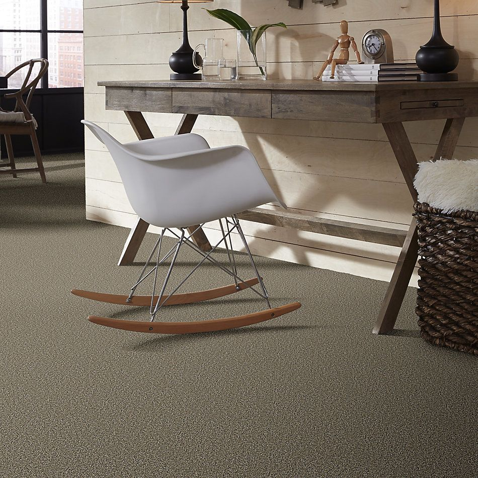 Shaw Floors Value Collections Breathe & Reflect Net Park Trail 00102_EA720