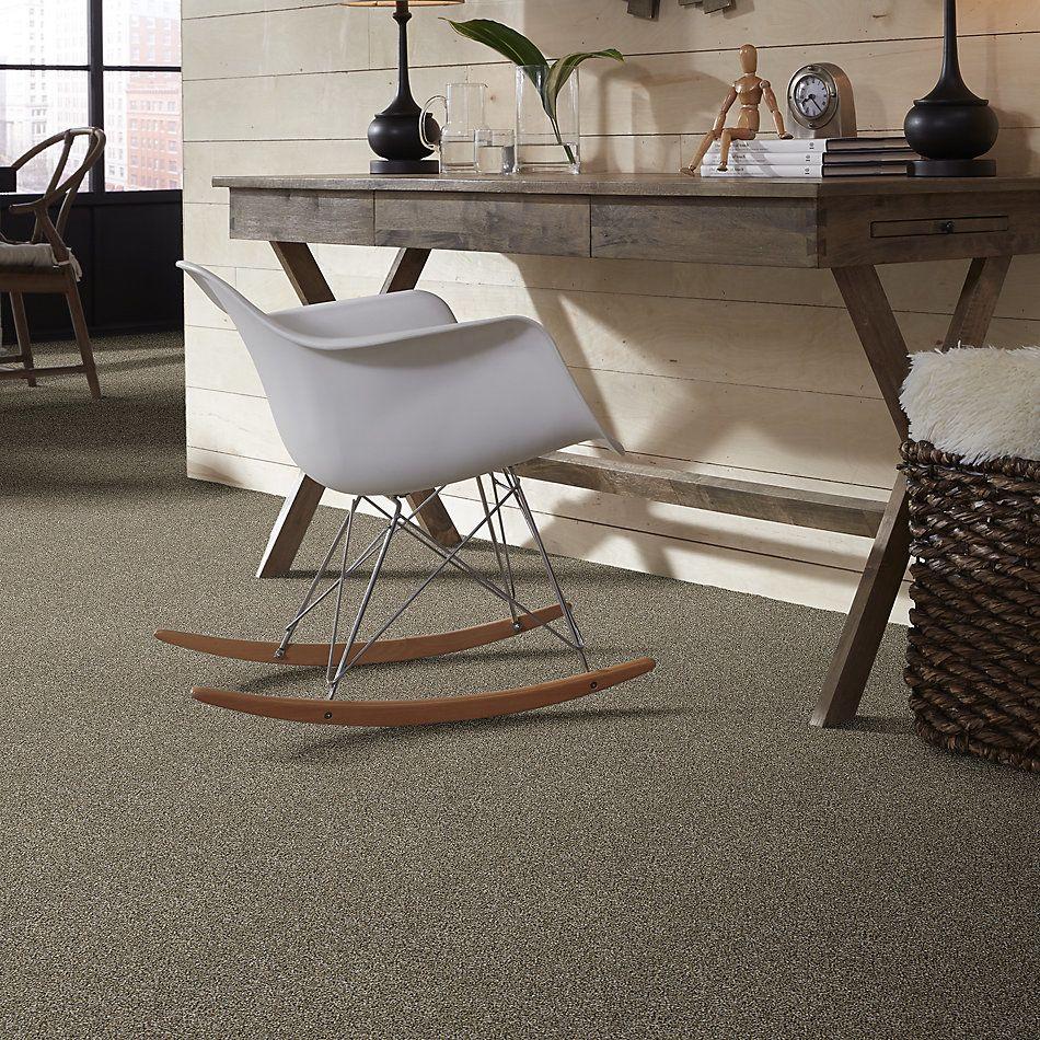 Shaw Floors Roll Special Xy226 Fox Fur 00102_XY226