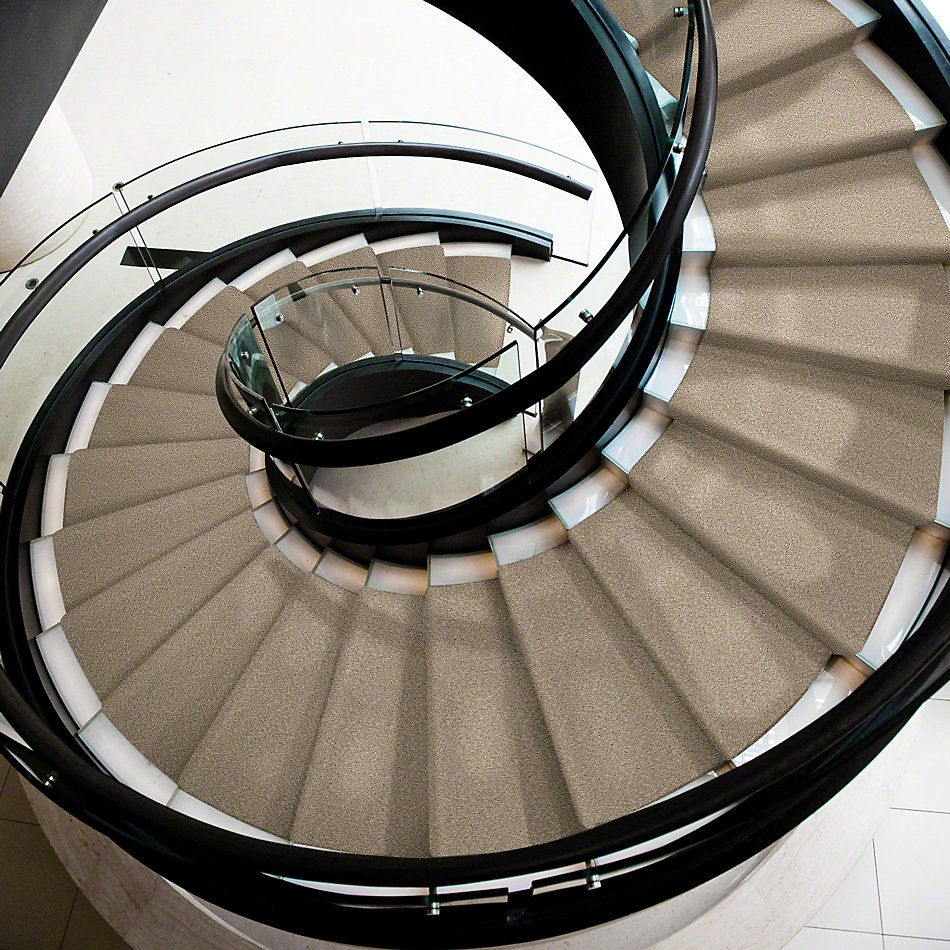 Shaw Floors Shaw Flooring Gallery Burtonville Stratosphere 00103_5293G