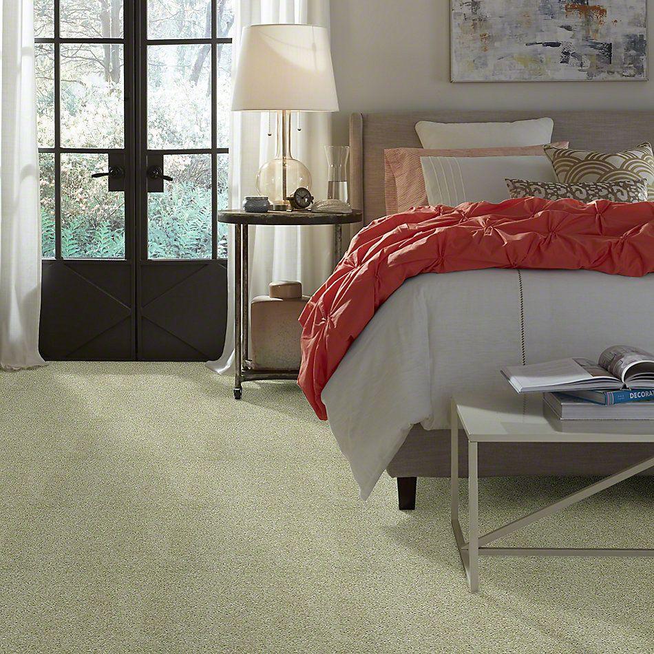 Shaw Floors Full Of Life Nature's Mist 00103_52N09