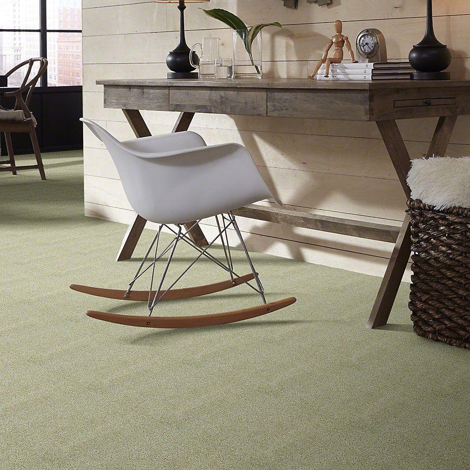 Shaw Floors SFA Kentfield Nature's Mist 00103_52N22