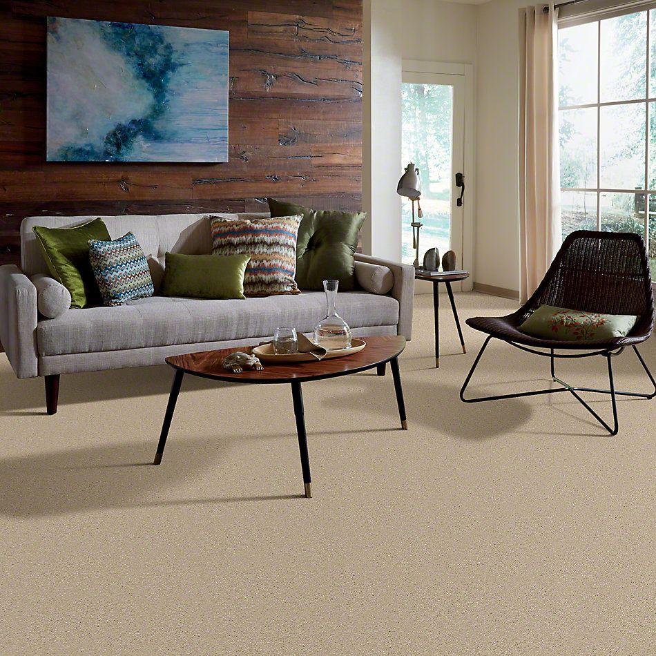 Shaw Floors Town Creek III Ecru 00103_52S32