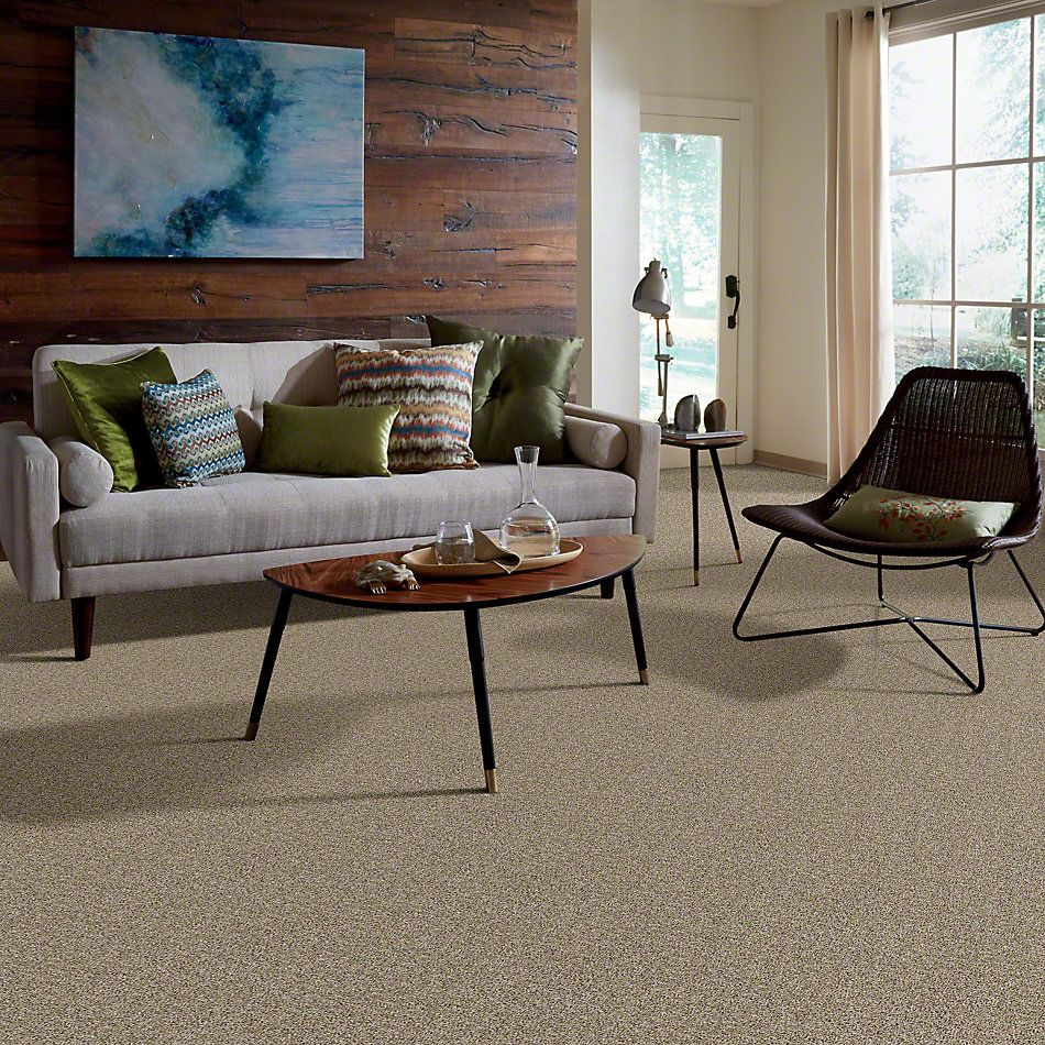 Shaw Floors Absolutely It Raw Silk 00103_5E084