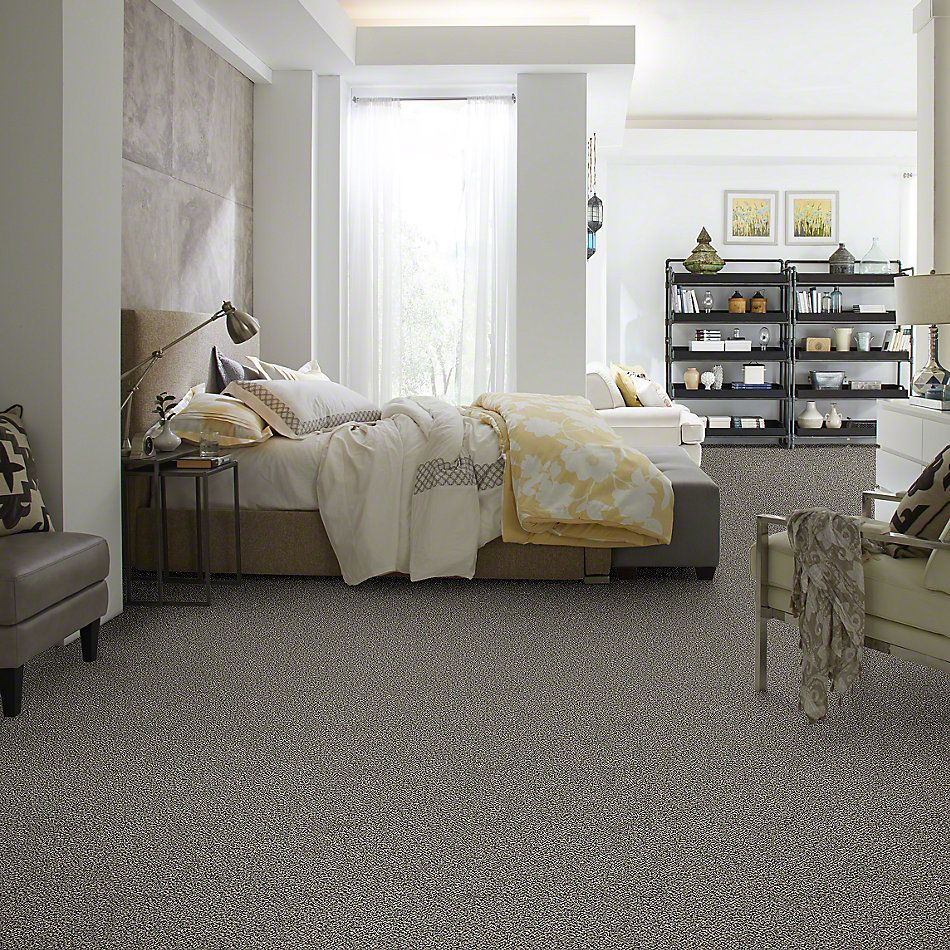 Shaw Floors Simply The Best Because We Can III 12′ Birch Tree 00103_E9188
