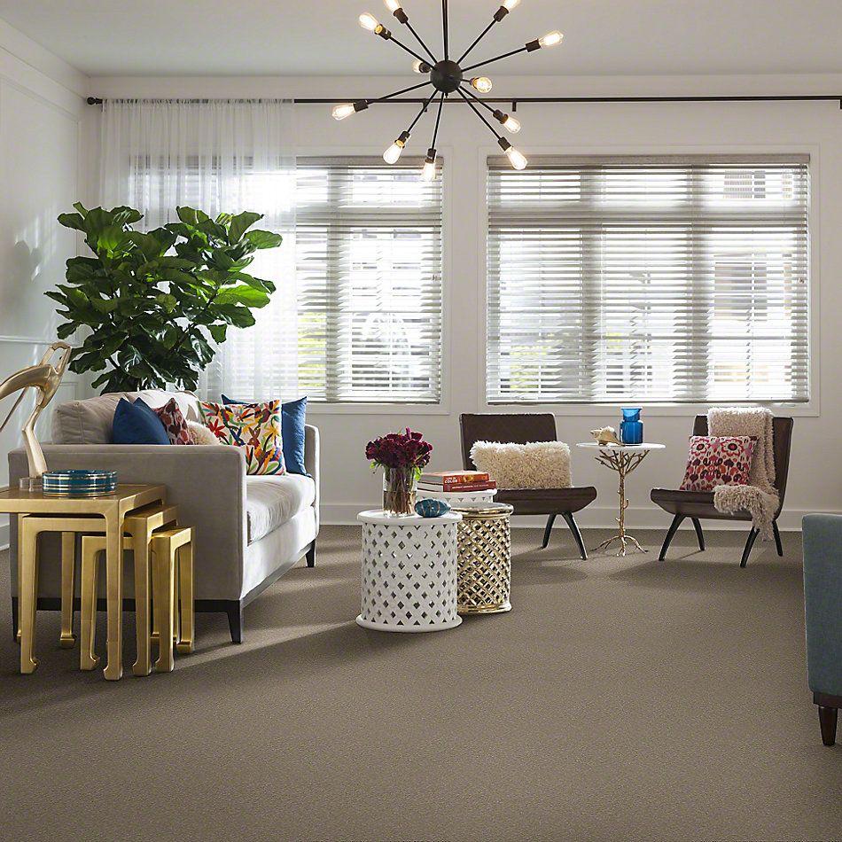 Shaw Floors Sandy Hollow I 12′ Mountain Mist 00103_Q4273