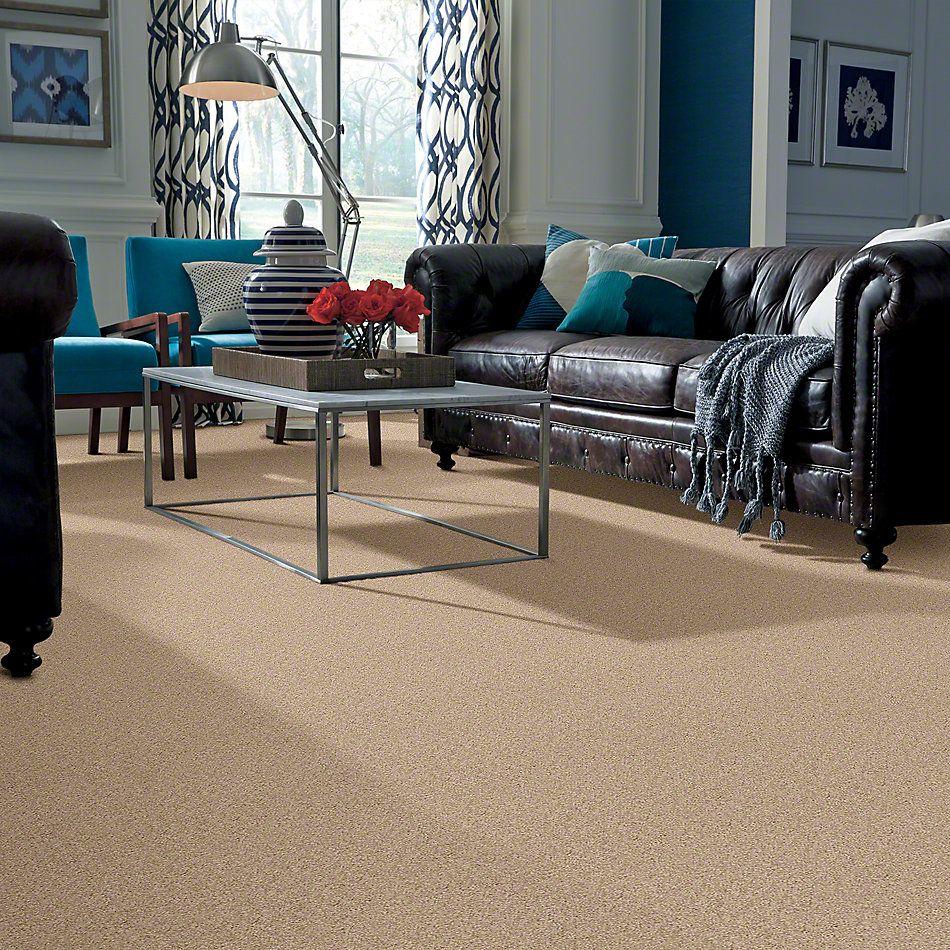 Shaw Floors Lonestar Creamy 00103_E0113
