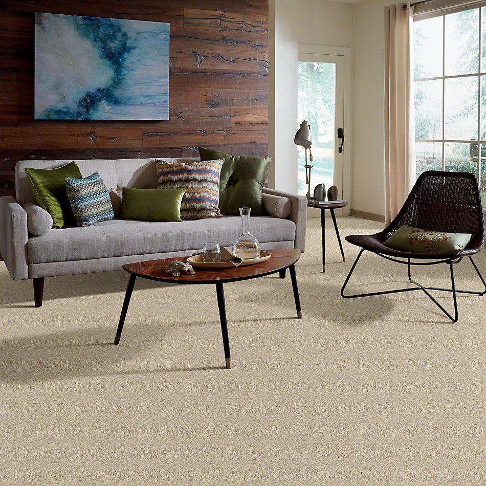 Shaw Floors To The Max Aspen 00103_E0565