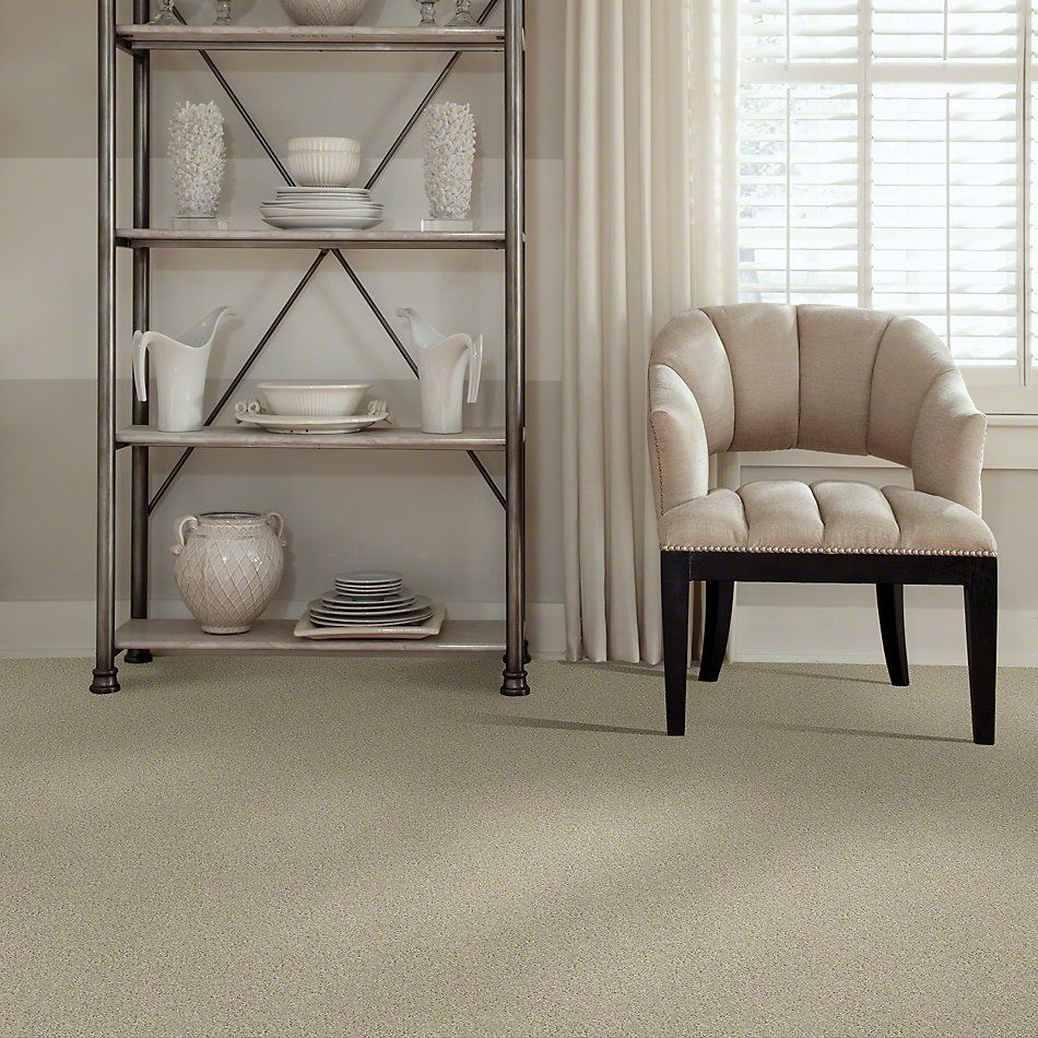Shaw Floors My Choice II French Linen 00103_E0651