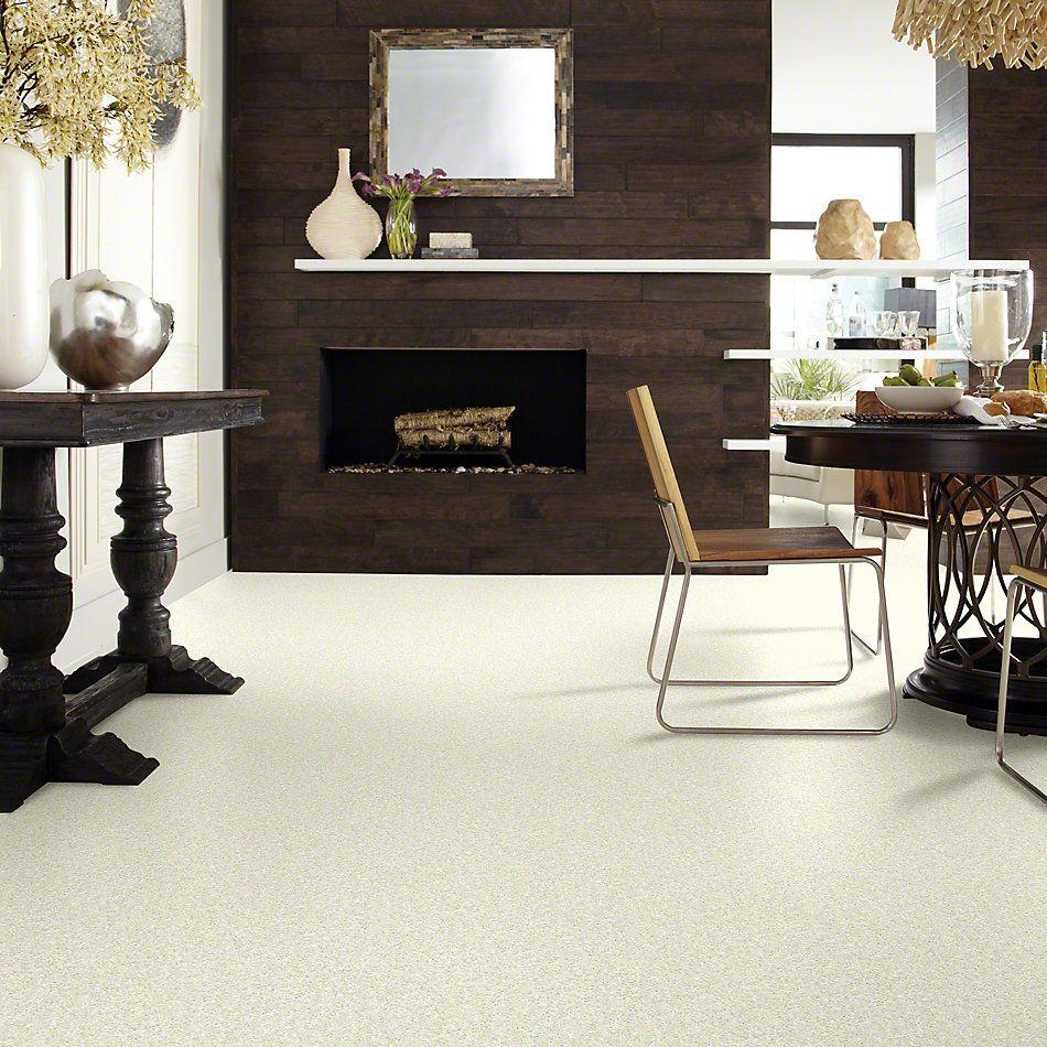 Shaw Floors Value Collections Tactical Net Linen 00103_E0679