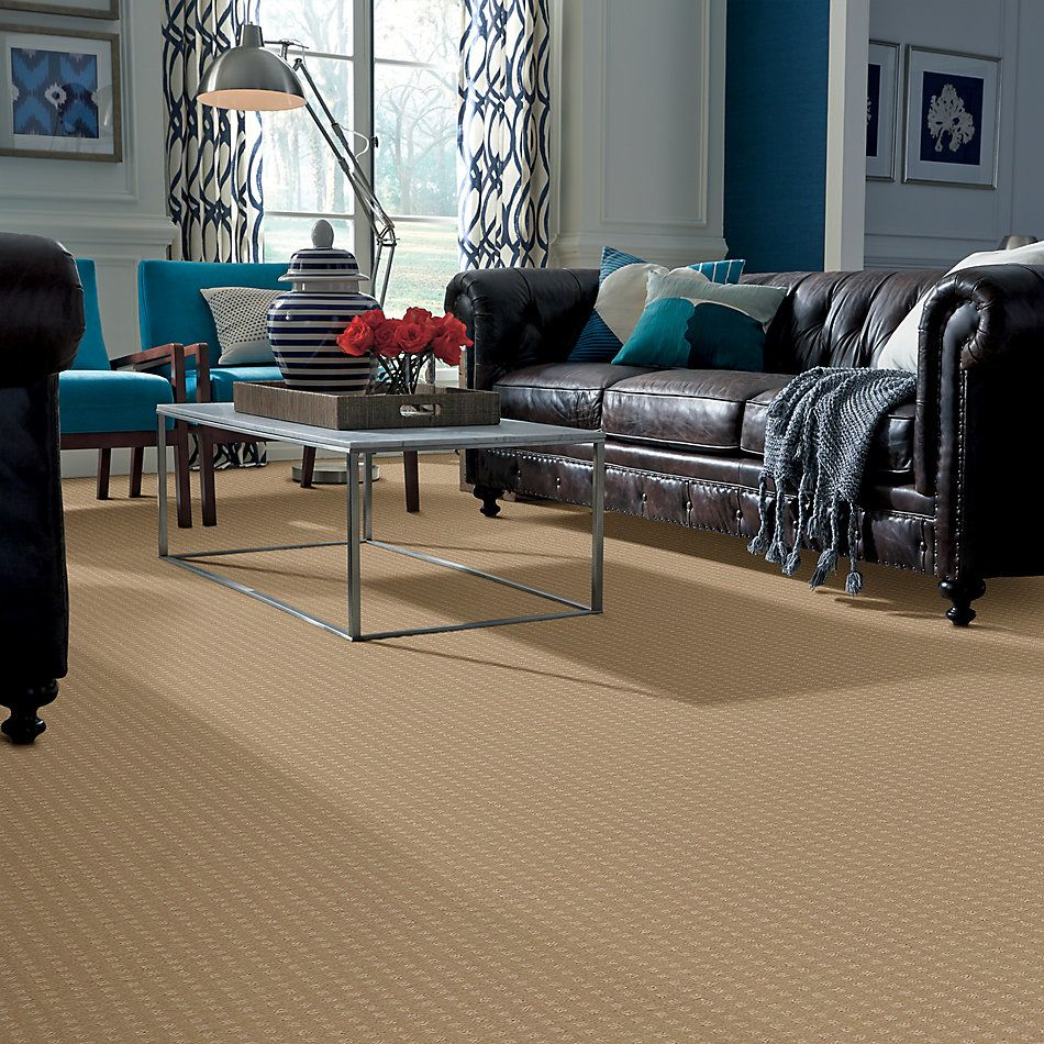 Shaw Floors Shaw Floor Studio Style With Ease Natural Grain 00103_FS150